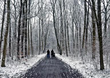 -Winterspaziergang-