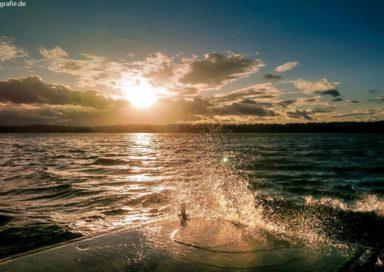 Gicht am Cospudener See