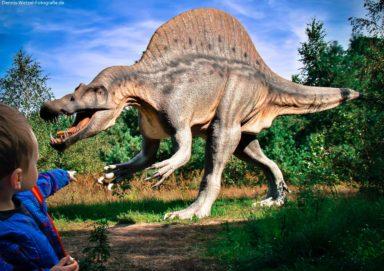 Dino und Noah